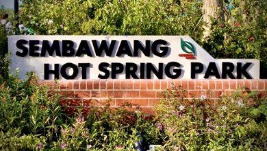 Sembawang Hot Spring Park