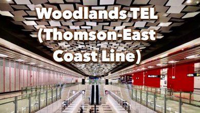 Woodlands TEL Station