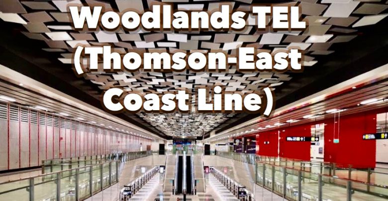 Woodlands TEL Station